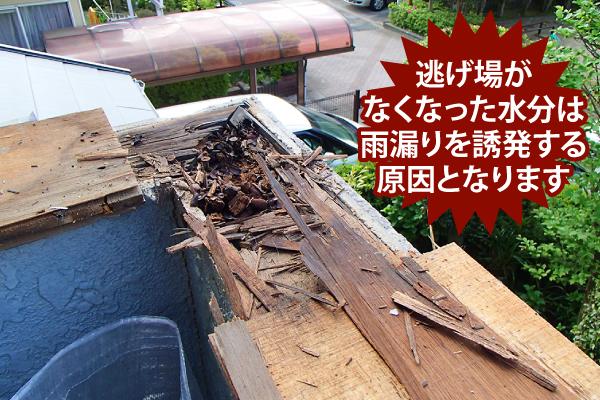 腐食した壁内部の木材