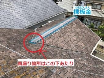 棟板金 雨漏り疑い箇所