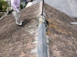 屋根に上がって調査
