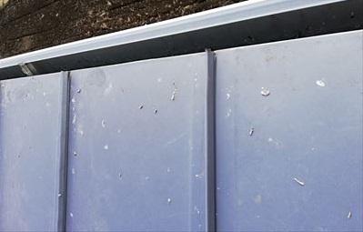 鳥の糞 金属屋根 劣化原因
