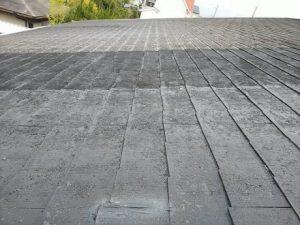 現地調査 大屋根の状況