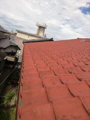 現地調査 屋根 雨漏り原因
