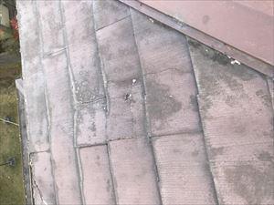 屋根材の劣化 雨漏り原因