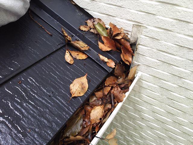 枯れ葉が詰まった雨樋