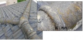 セメント瓦 苔 汚れ