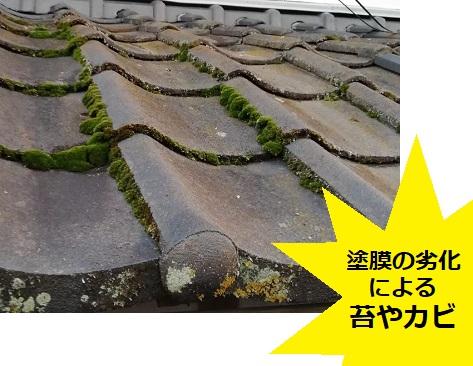 セメント瓦 塗膜劣化 苔 カビ