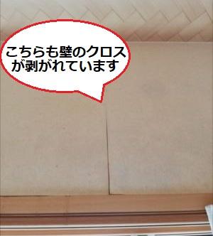 壁クロス 壁紙 剥がれ 雨漏り