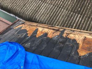 屋根 破損箇所