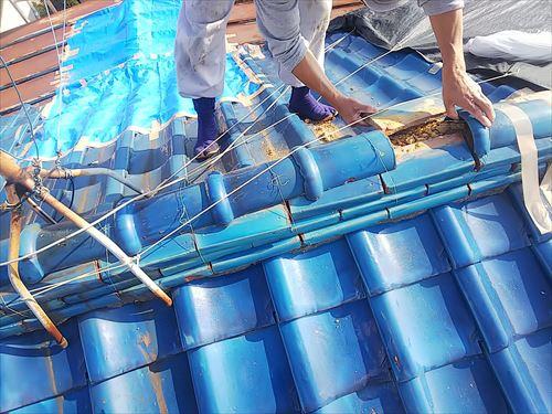 屋根の上は危険が多い コラム