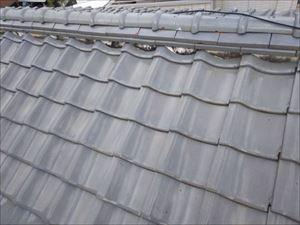雨漏れ箇所 真上 屋根点検