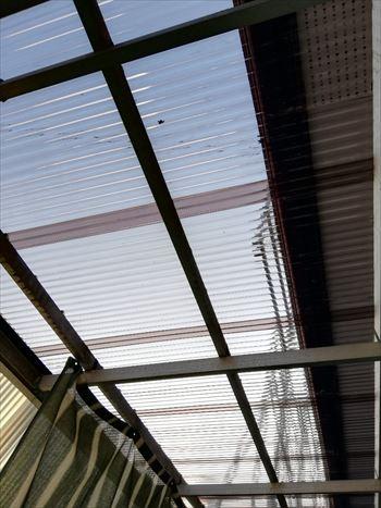 テラス波板屋根 交換工事後