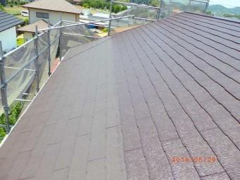 屋根上塗り全景