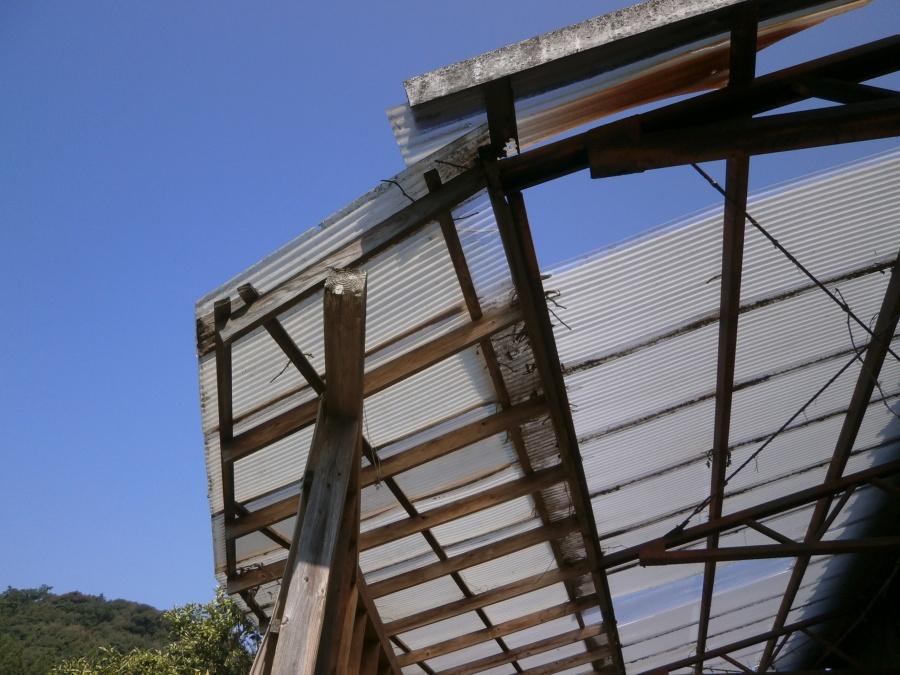 台風で破損した波板