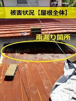 トタン屋根 錆び 雨漏り
