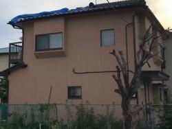 応急処置 台風被害 現地調査