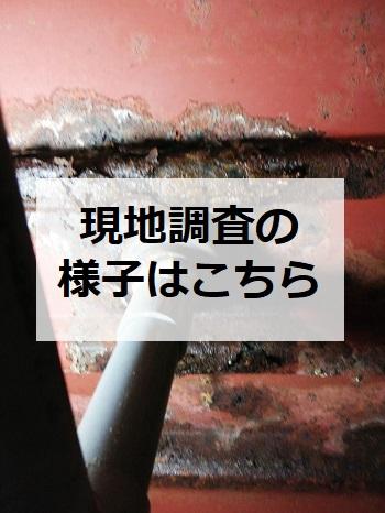熊本市 集合住宅 水漏れ 現地調査の様子