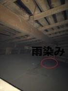現地調査 天井裏の雨染み