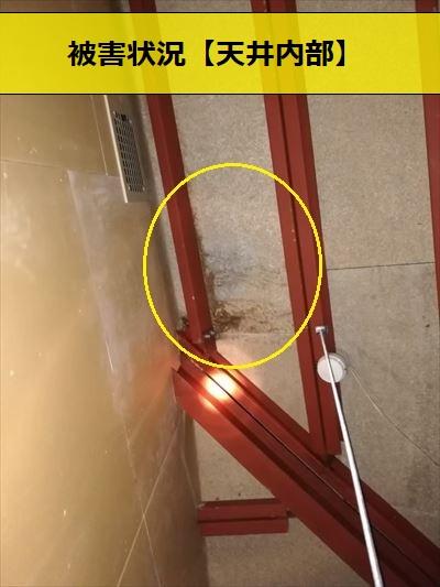 雨漏り 天井内部 黒ずみ