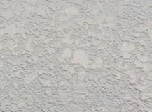 外壁塗装 ファインパーフェクトトップ 工事後
