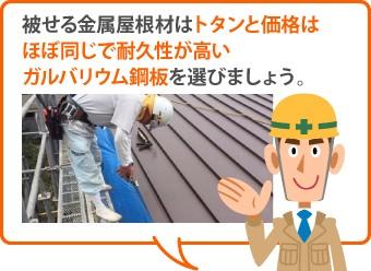 被せる金属屋根材はトタンと価格はほぼ同じで耐久性が高いガルバリウム鋼板を選びましょう